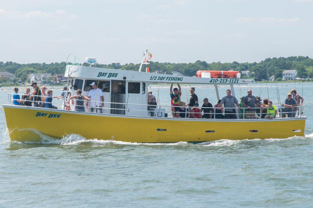 The Bay Bee Head Boat