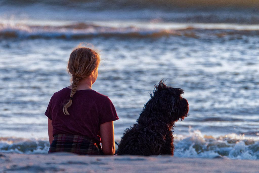 Pet-friendly places in Ocean City